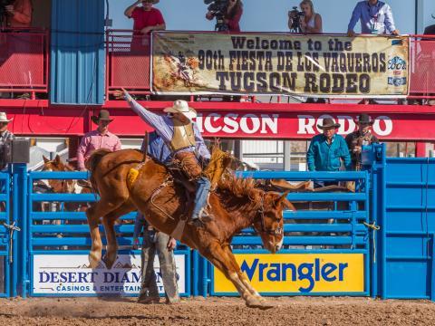 La Fiesta de los Vaqueros au Tucson Rodeo