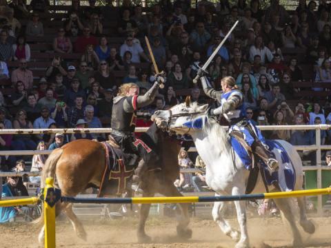 La célèbre fête annuelle Sonora Celtic Faire rend hommage aux cultures celtiques