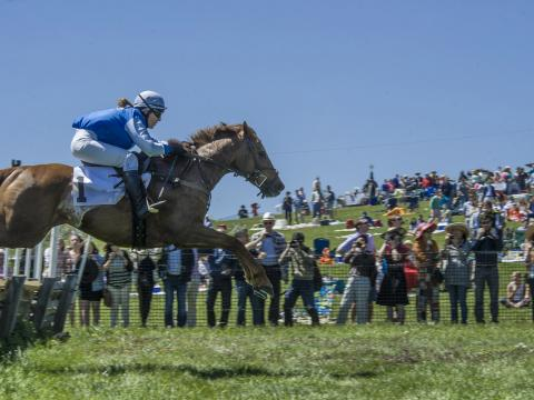 Concours de saut d'obstacles de Point-to-Point at Winterthur, à Wilmington, dans le Delaware
