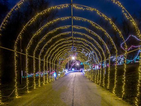 Découvrez les illuminations de Noël à Christmas Wonderland