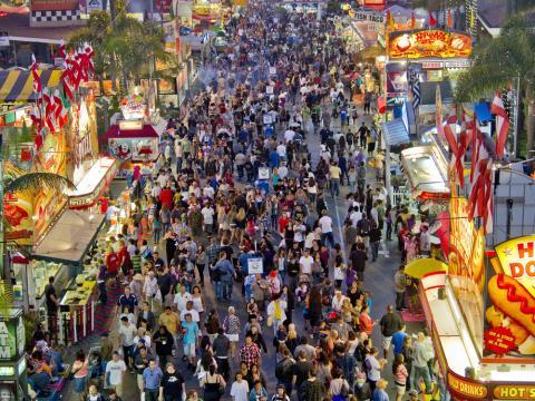 San Diego County Fair's vivid scene