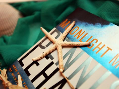 Seashells and books in Amelia Island, Florida
