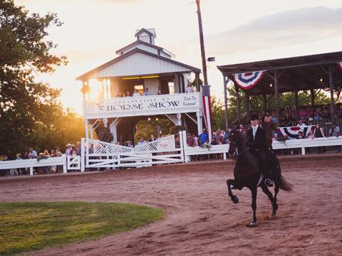 Un cheval et son cavalier en compétition au Shelbyville Horse Show de Shelbyville, dans le Kentucky