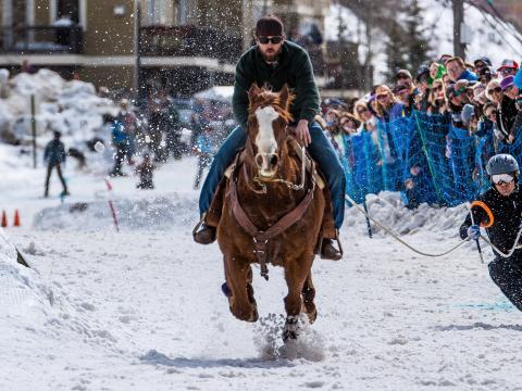 Skijoring à cheval pendant la compétition Skijor West Championships de West Yellowstone