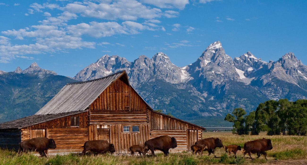 Le Wyoming Wyoming Tourisme Voyage Wyoming