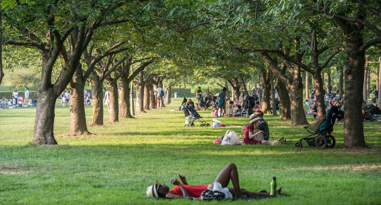 New york visit the usa for Jardin botanique 78