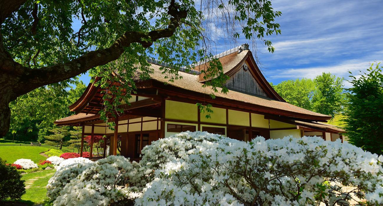 Brise Vue Jardin Japonais shofuso japanese house and garden